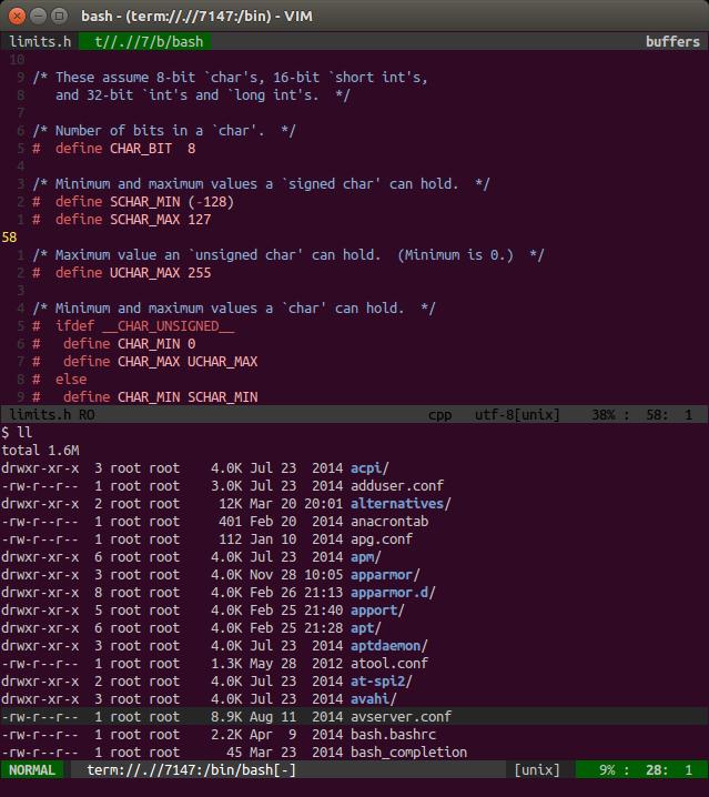 Bash terminal running in split window in NeoVim