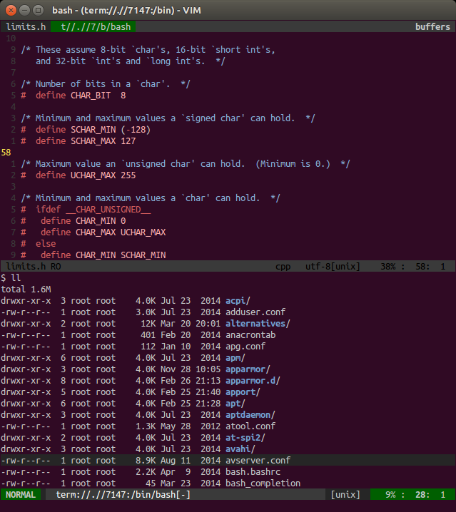 Bash terminal running in split window in NeoVim